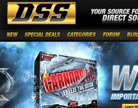 DSS Website