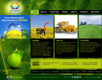Website design for Emami Biotech