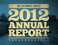 Wel Networks' Annual Report - 2012