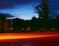 Night's Palette