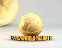 Logo Design & Rollup For Trans World Markets