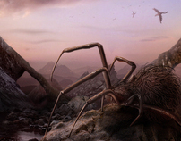 Spiders planet