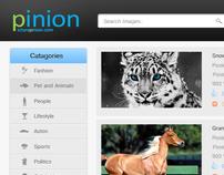 PINION (PICTURE OPINION.COM)