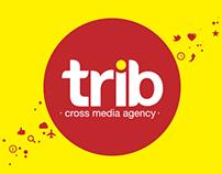 Motion Graphics / Trib Cross Media Agency