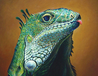 Wildlife: A Portrait