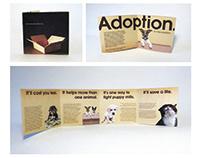Social Awareness Brochure
