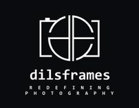 dilsframes