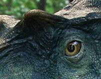 Albertosaurus. Dino Dana