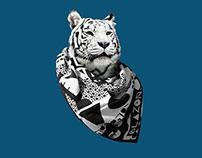 Blazon - Cat Campaign