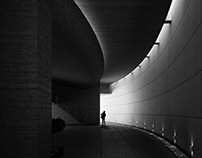 Light & Shadow - 5