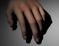 3D MODEL: human hand
