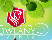 Sowlany website