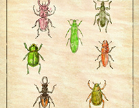 Beetles Vintage Collection on Antique Paper