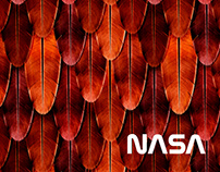 ILLUSTRATIVE PATTERN DESIGN FOR NASA