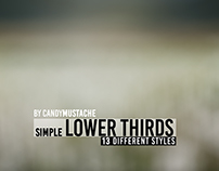 Simple Lower Thirds // Videohive