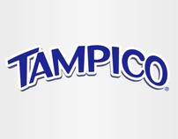 CASO TAMPICO (2010)