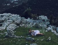 Wild Lullaby