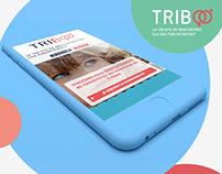 Création du site web de rencontre Triboo