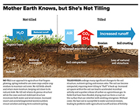 Tilling Infographic