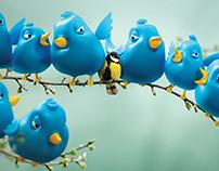 National Geographic Kids Magazine - Twitter Birds