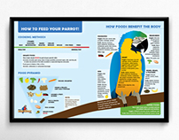 BirdTricks Parrot Infographic