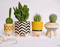 ceramic pots for cactus