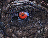 Elephant - 2016