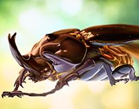 Ilustración digital - Escarabajo Elefante