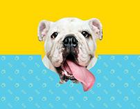Doggi - Pet Store