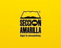 SECCIÓN AMARILLA