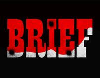 DISEÑADOR vs BRIEF
