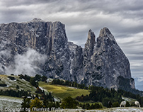 Seiseralm South Tyrol Italia