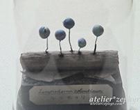 Miniature myxomycetes