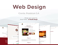Web design & Development for Prodalsan S.A.