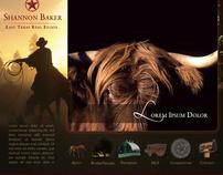 Website designs 2006-2008