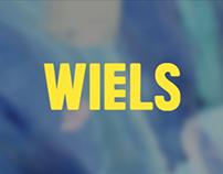 Workshop DWMCG - WIELS
