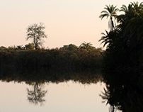 Serene yet not safe - the Okavango Delta