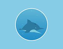 Dolphin Circle Icon