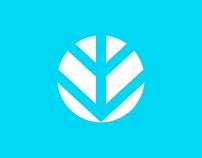 IMM Brand | Design System