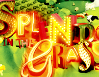 Splendour in the Grass 2009 Poster