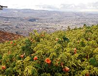 Mirador del Cerro Monserrat en Bogotá, Colombia