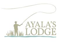Ayala's visual identity and website