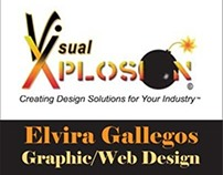 Visual Xplosion Business Card