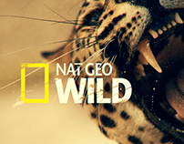NAT GEO WILD Big Cat Week // Promo Package