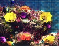 Oceanic Pool