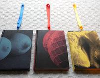 Literatura erótica - Sistema de libros