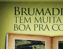 Planejamento de Campanha Prefeitura de Brumadinho - MG