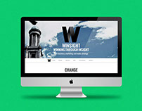 Winsight.ie website design and development