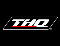 THQ Website Pitch (Dec 2008)