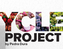 RECYCLE PROJECT Pedra Dura